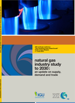 Natural Gas Industry Study to 2030: An Update on Supply, Demand & Trade