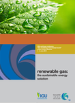 Renewable Gas: The Sustainable Energy Solution
