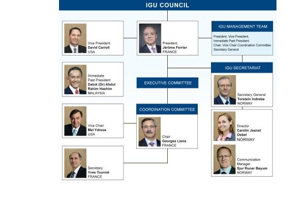 IGU Organisation