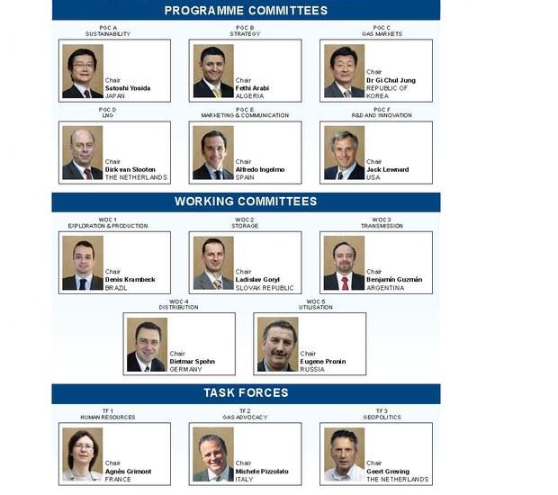 IGU Groups 2012-2015