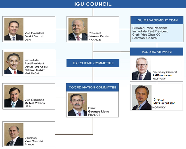 IGU New Organisation 2015