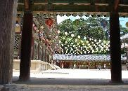 Image: IGU Venue Gyungju