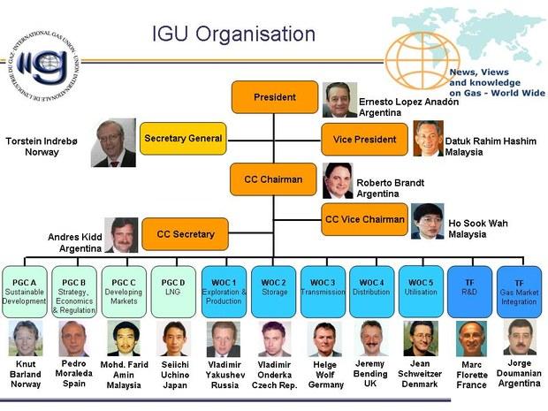IGU organisation chart